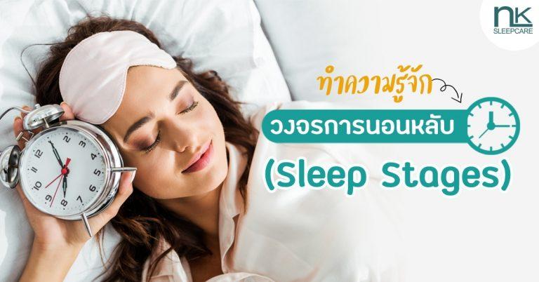 มาทำความรู้จักระดับการนอน (Sleep Stages) และวงจรการนอน (Sleep Cycle)